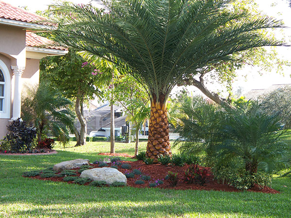 Tricounty Landscaping
